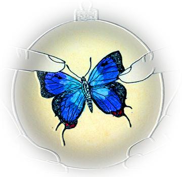 Hairstreak Butterfly Detail © Carolyn Rutgers Clark