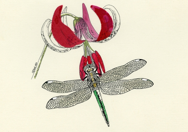 Lily and Dragonfly 2009 © Carolyn Rutgers Clark