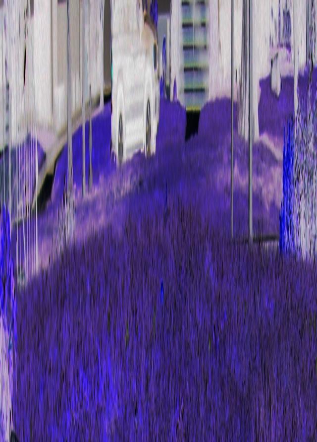 Insane Dimensions © Catherine Rutgers