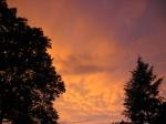 Think Pink and Orange Heat