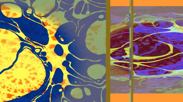 Laced Hue Two © Catherine Rutgers 2014