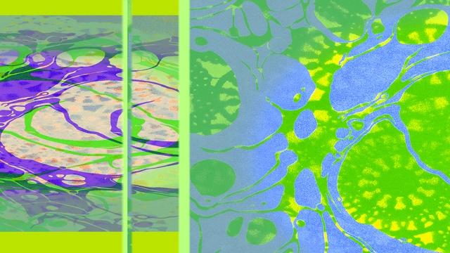 10 Lace Flip Hue Seven - CatRutgers.jpg