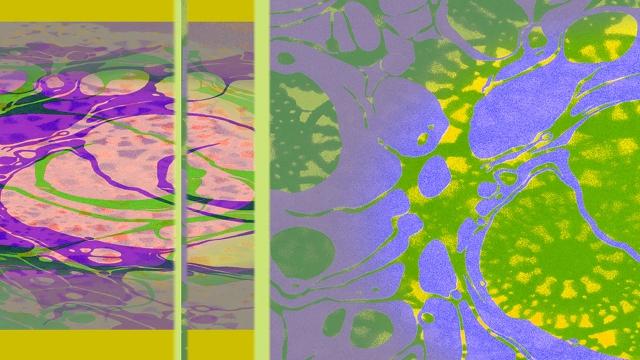 11 Lace Flip Hue One - CatRutgers.jpg