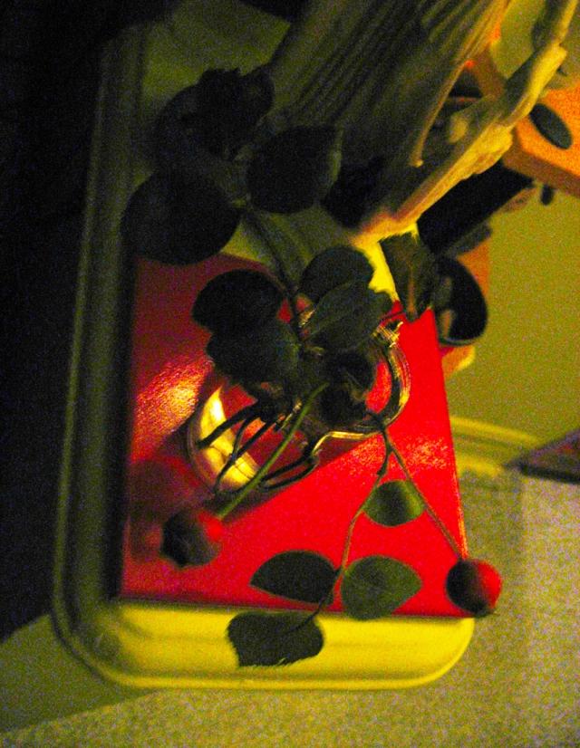 Rose Hips Adorning Athena © Catherine Rutgers 2015