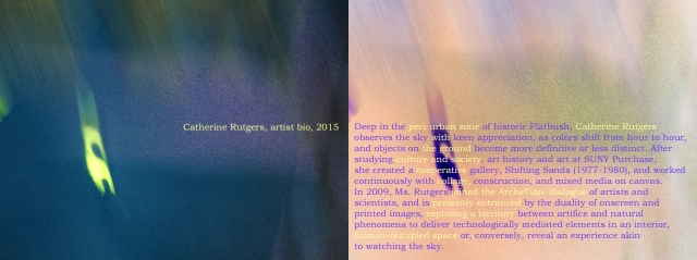 Catherine Rutgers, Artist's Bio © May 2015